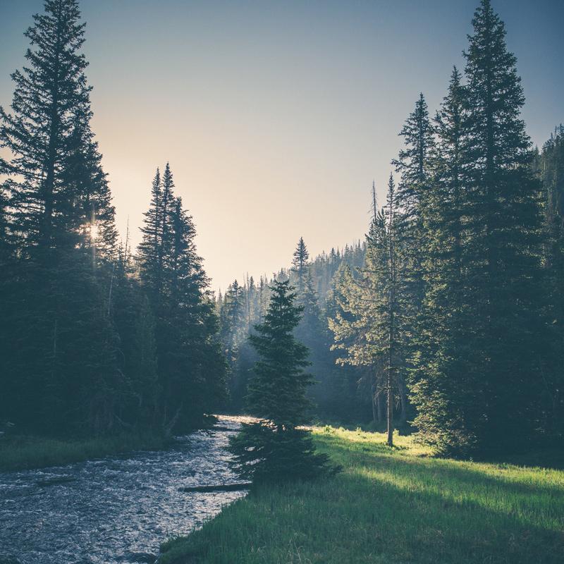 adventure-montana